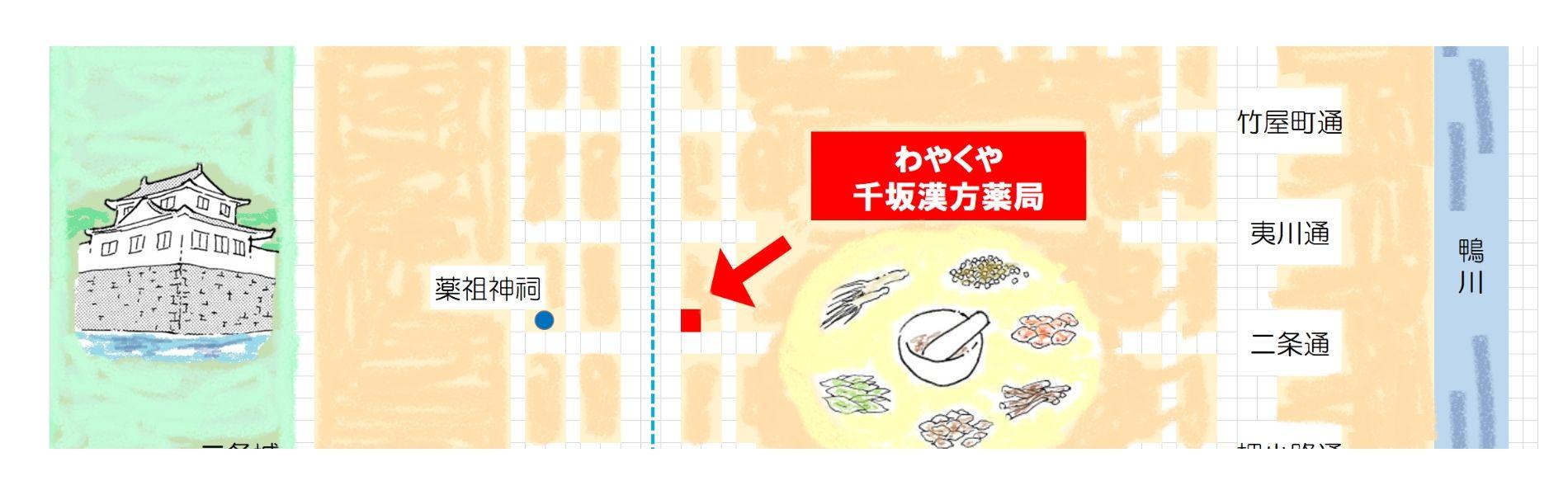 漢方の花 花芍薬